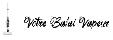 Balai Vapeur